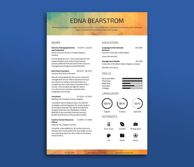 online resume builder fancy resumes
