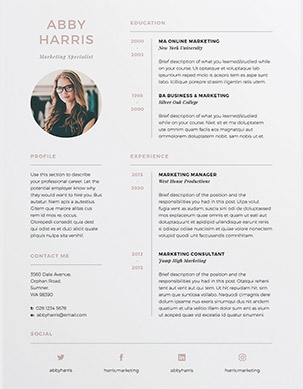 3 Pages Resume/CV Abby  Fancy Resume