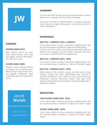 bluette professional resume