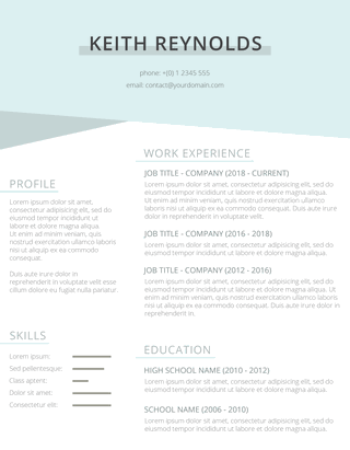 minty resume template